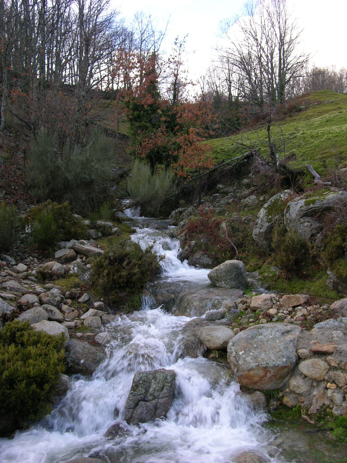163 - De antiguo establo rural a fantástica casa rústica en Cáceres: un remanso de paz y naturaleza