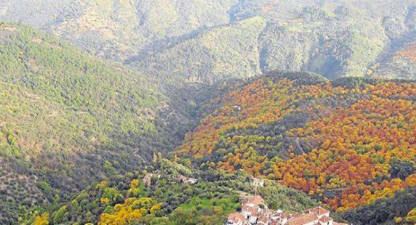 17144030 e1506681053381 600x325 - Los mejores pueblos de Málaga para una escapada rural en las fiestas del Pilar