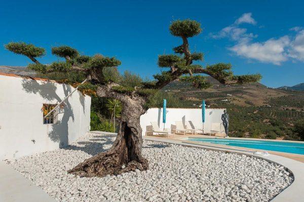26224224 2069553 foto 684387 600x399 - Conoce la historia de esta iglesia convertida en villa de lujo en La Viñuela