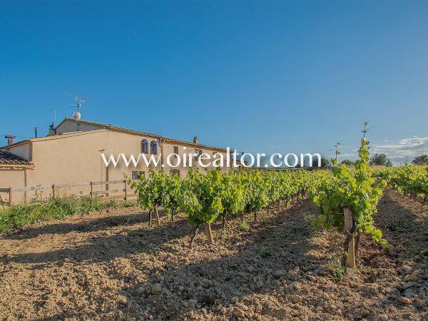 31005553 2535474 foto 017774 600x450 - Estilo rustico y preciosos viñedos en Avinyonet del Penedés (Barcelona)