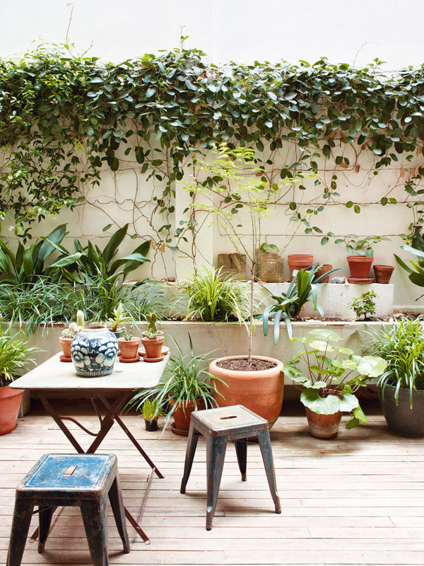 323 - Toque cosmopolita y un patio interior encantador en un piso en el Gòtic de Barcelona
