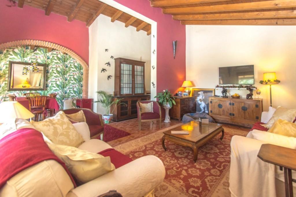 66884997 2774824 foto 434302 - Naturaleza y mundo ecuestre fusionados en una preciosa finca en Álora (Málaga)