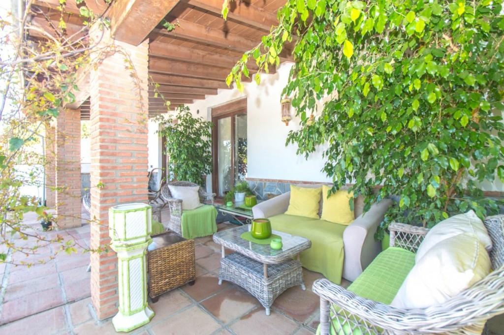 66884997 2774824 foto 747114 - Naturaleza y mundo ecuestre fusionados en una preciosa finca en Álora (Málaga)