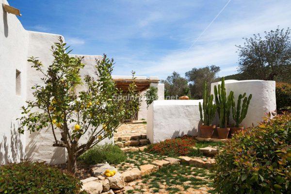 68532389 2130392 foto 020668 600x400 - Contempla el paraíso natural único que rodea esta casa en Santa Eulalia del Río, Ibiza