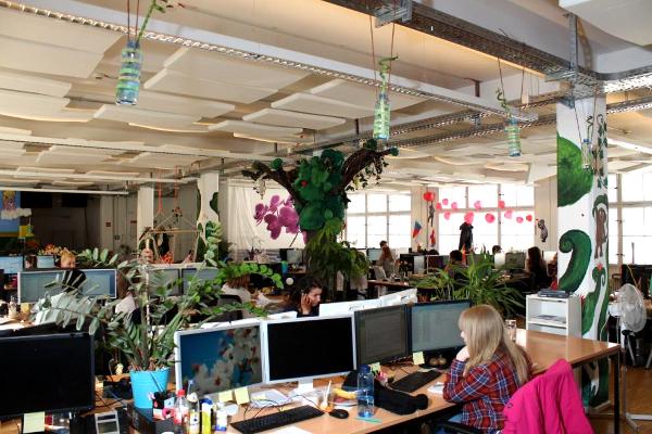 Decoración de oficina estilo selva tropical1 - Las oficinas de eDarling se cubren de colores y creatividad