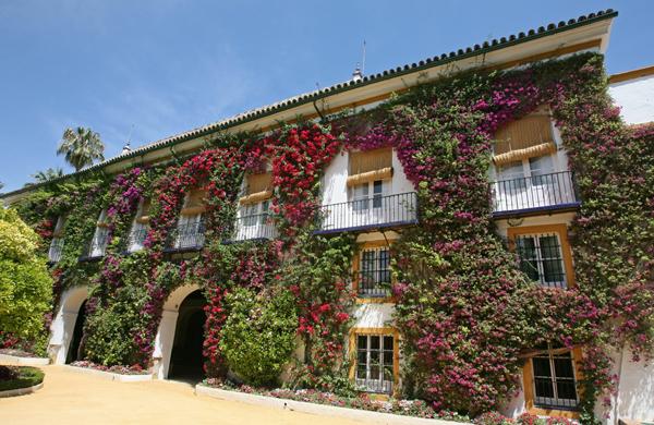Palacio de Dueñas11 - El Palacio de las Dueñas en Sevilla, la propiedad más querida de la Duquesa de Alba
