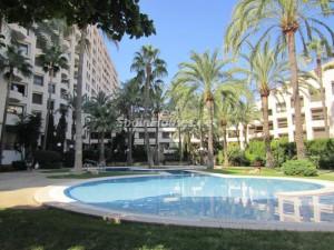 apartamentos palmademallorca 300x225 - Las familias compran el 84,72% de las casas que se venden, los extranjeros el 13%