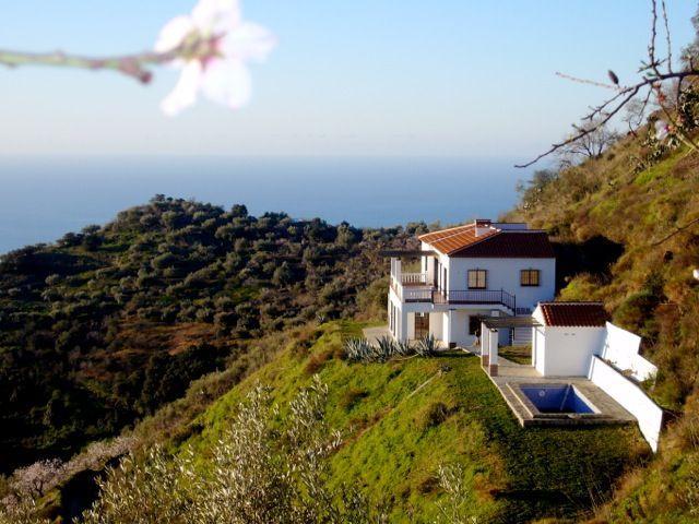 arenas malaga 1 - 15 viviendas que ya se visten de primavera: flores y espacios abiertos para disfrutar