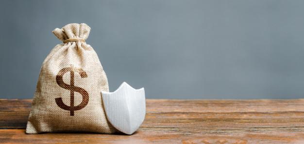 bolsa simbolo dolar escudo proteccion 72572 1036 - Cinco matices sobre la nulidad de los avales hipotecarios