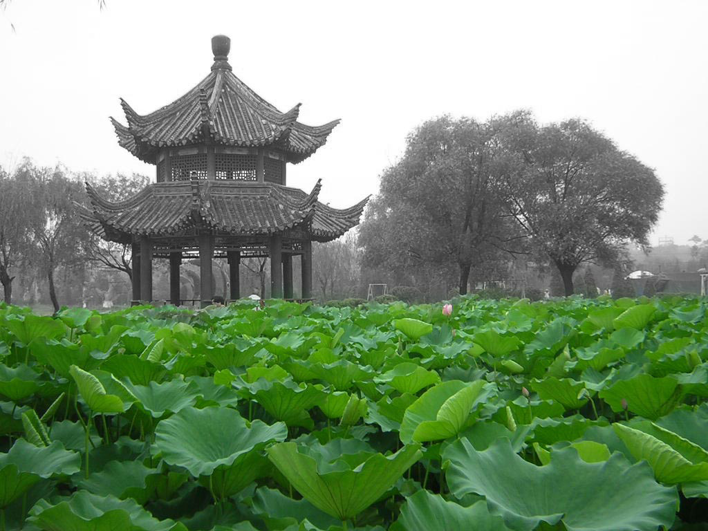 china - Las Inmobiliarias Españolas Invierten en China