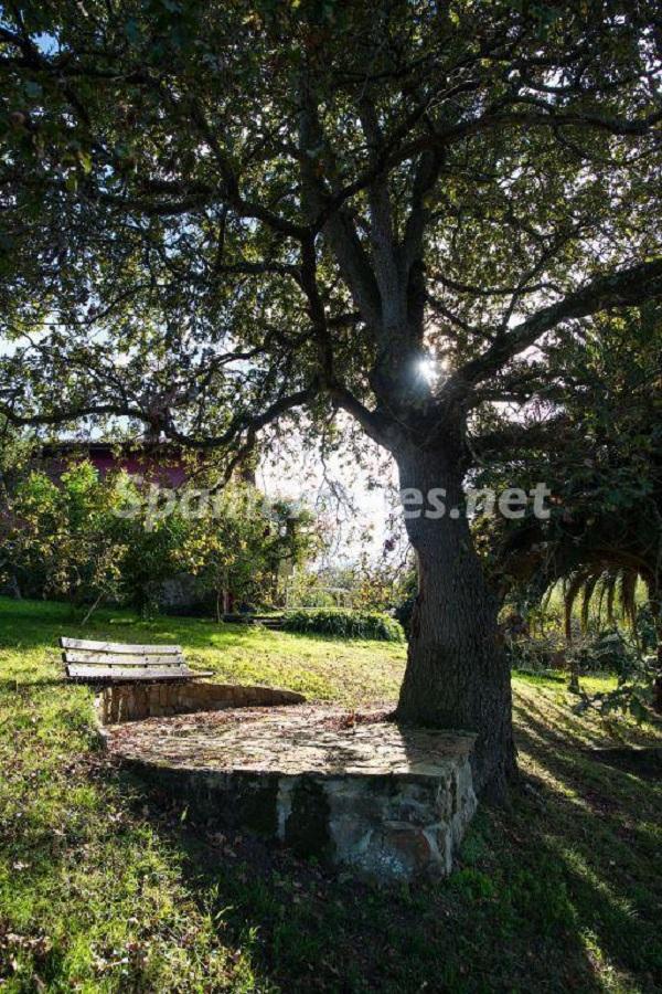 detalle jardin1 - Casa primaveral en Villaviciosa (Asturias): encanto, naturaleza y un romántico jardín