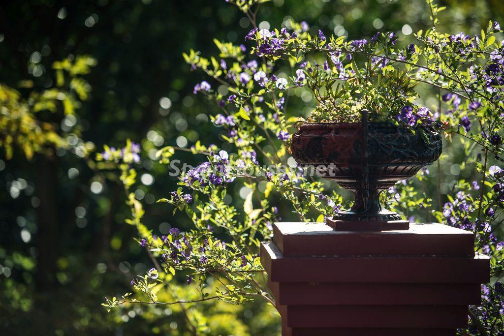 detalle jardin2 1024x683 - Casa primaveral en Villaviciosa (Asturias): encanto, naturaleza y un romántico jardín