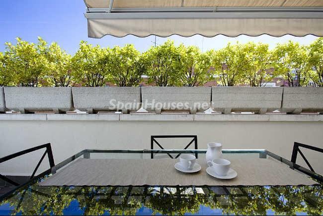 detalleterraza - Elegante y acogedor ático en alquiler en el barrio de Salamanca, Madrid