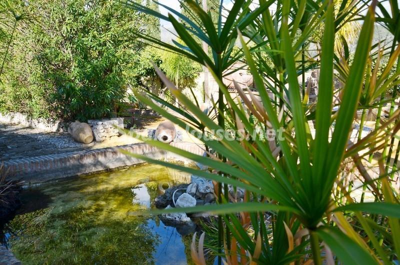 estanque - Vacaciones llenas de encanto en un cortijo andaluz en Frigiliana (Costa del Sol, Málaga)