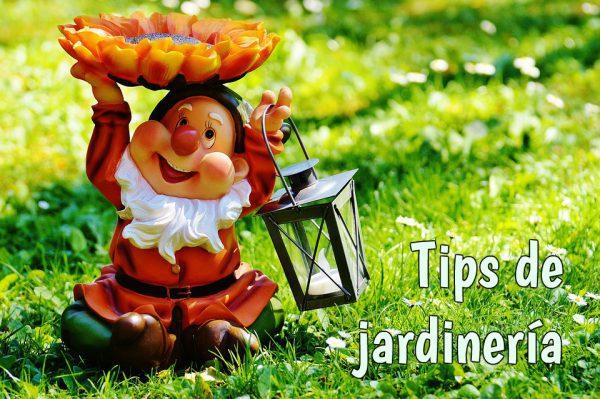 garden 600x399 - ¿Casa con jardín? Aquí tienes algunos tips para poner a prueba tu creatividad