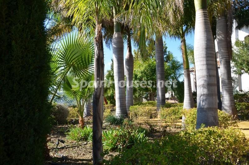 jardin1 1 - Vacaciones llenas de encanto en un cortijo andaluz en Frigiliana (Costa del Sol, Málaga)