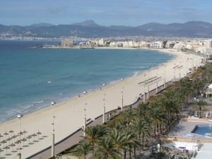 palmademallorca2 300x225 - El precio de la vivienda en Baleares y Canarias cae en enero un 6,9%