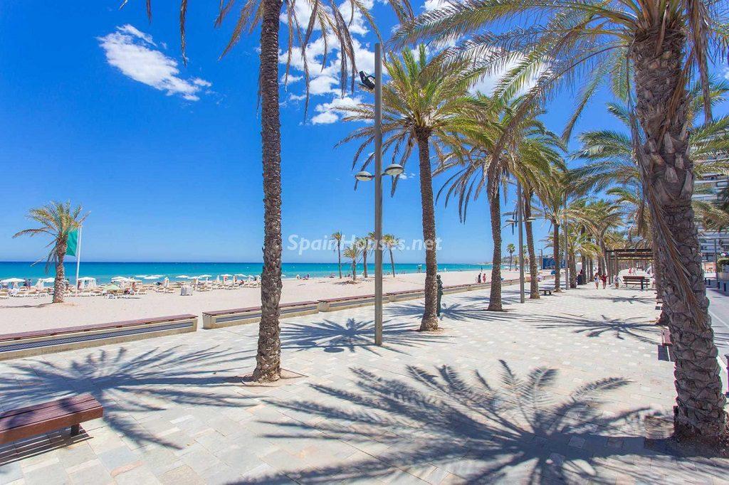 paseomaritimo playa 1024x682 - Veranos de luz y vistas al mar en un piso en Playa de San Juan (Alicante)