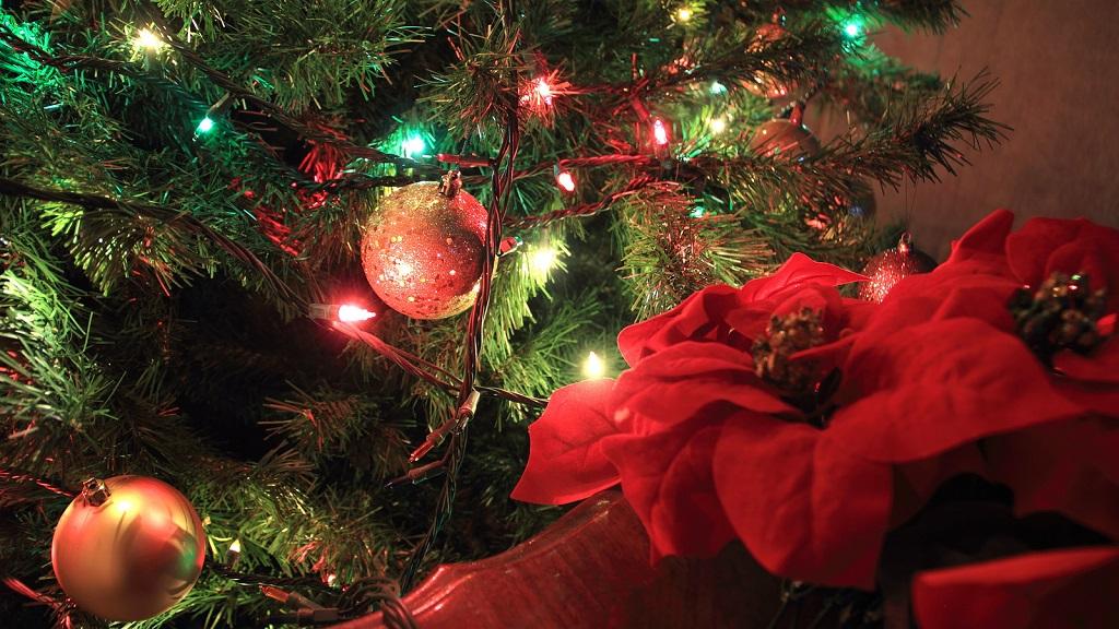 poinsettia arbolnavidad - Decorar el árbol de navidad con flores: un ambiente fresco con un resultado espectacular