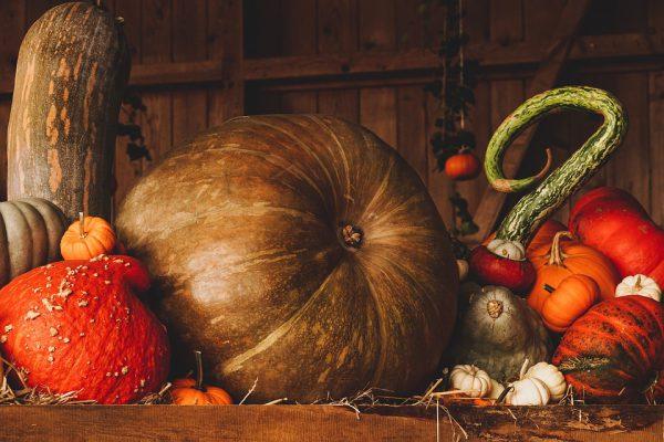 still life 3698130 960 720 600x400 - Decoración de Halloween elegante y con estilo